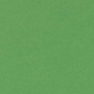 CARTULINA A2 50X65 CM 185G VERDE BILLAR