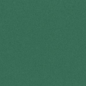 CARTULINA A2 50X65 CM 185G VERDE ABETO