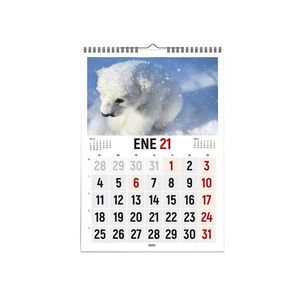 CALENDARIO 2021 VERTICAL FOTOS ANIMALES 30X43 CASTELLANO INGRAF