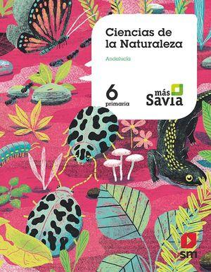 6EP. CIENCIAS DE LA NATURALEZA MAS SAVIA ANDALUCIA SM